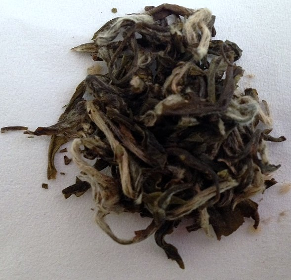 Pai Mu Tan, Organic White Tea