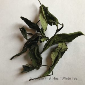 Japanese Whole leaf White Tea First Flush